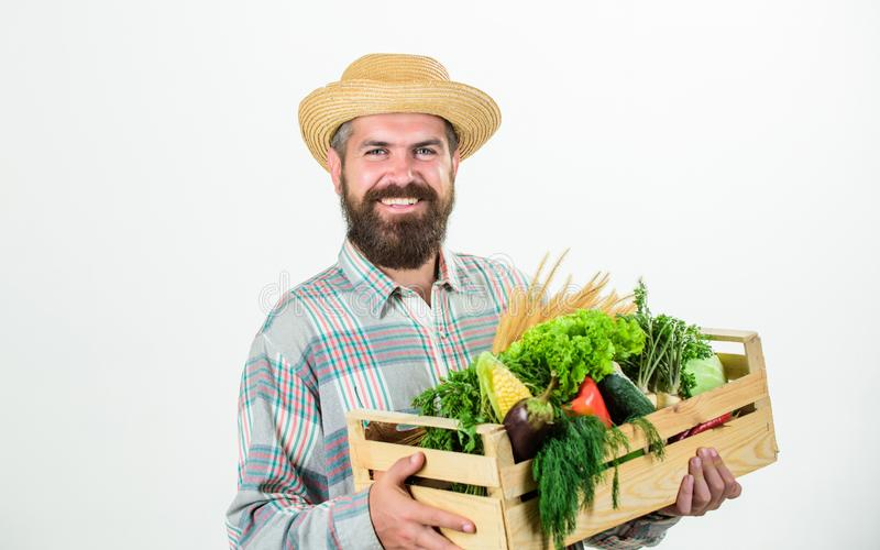 Buy local foods. Farmer rustic bearded man hold wooden box with homegrown vegetables white background. Farmer guy carry royalty free stock photo