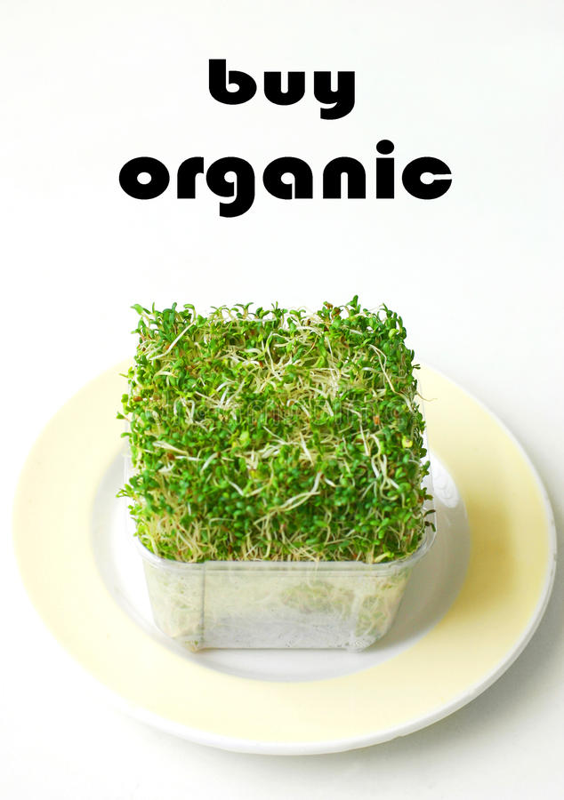 Buy Organic products alfalfa stock photo