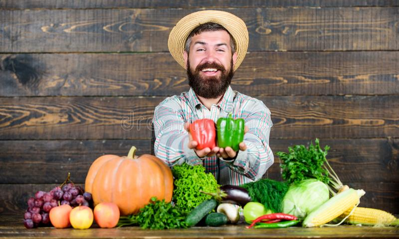 Buy vegetables local farm. Homegrown harvest concept. Typical farmer guy. Farm market harvest festival. Man mature stock image