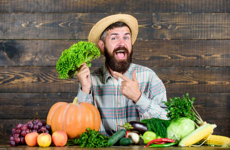 Buy vegetables local farm. Typical farmer guy. Farm market harvest festival. Man mature bearded farmer hold vegetables royalty free stock image