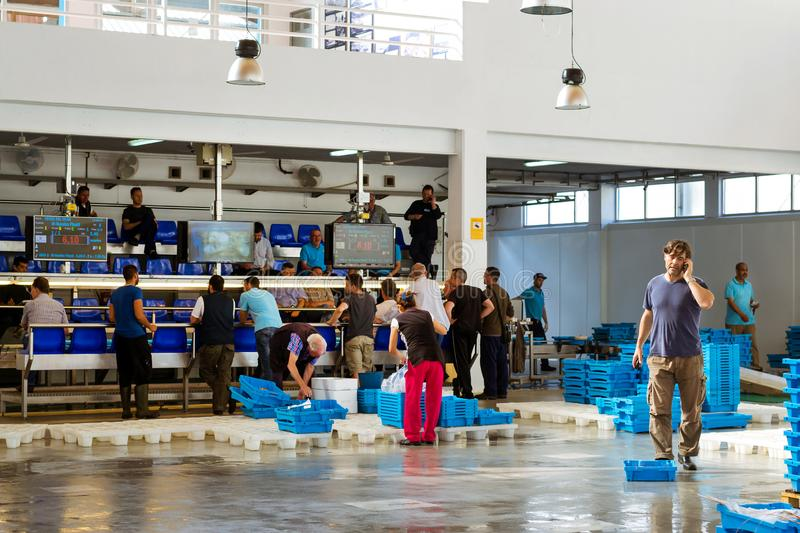 Buyers traded at conveyor, fish auction in Blanes. Blanes, Spain - 31 may, 2018: Buyers are traded at conveyor. Fish auction for wholesalers and restaurants stock photography