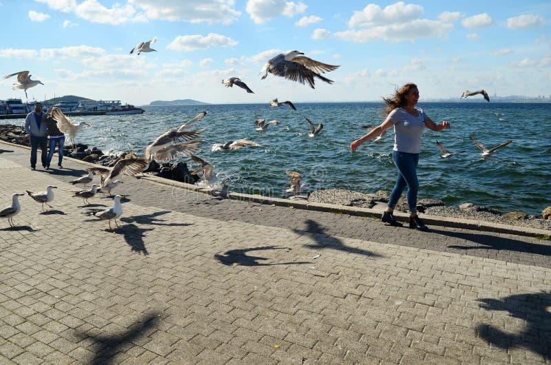 Buyukada ö, Istanbul, Turkiet - MAJ 10, 2018: Flicka i kusten med många seagulls omkring royaltyfri foto
