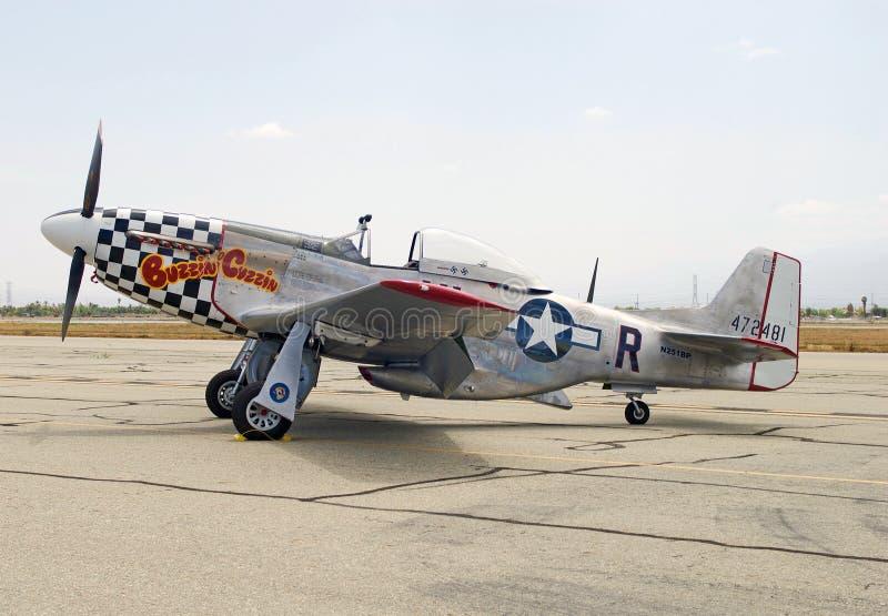 Buzzin Cuzzin P-51 mustanga myśliwiec obrazy royalty free