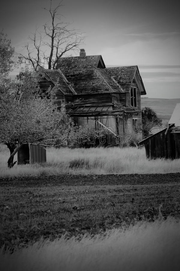 BW Frontier Farmhouse in Wheat Field royalty free stock photos