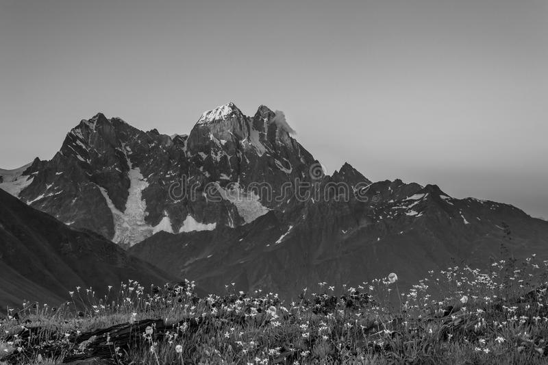 BW Landscape with Mountain Ushba stock images