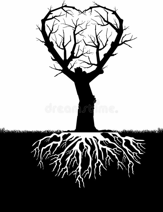 bw serca drzewo ilustracji