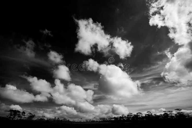 BW sky. stock image