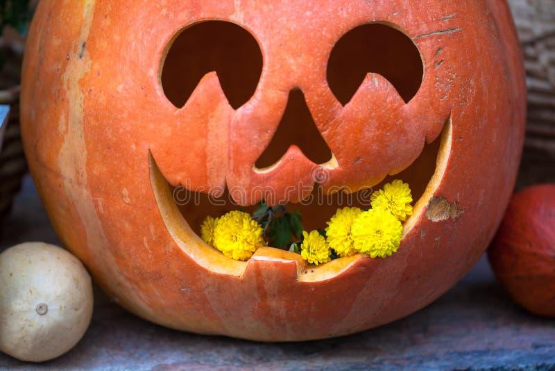 Byczy dyniowy ?mia? si? na Halloween zdjęcia stock