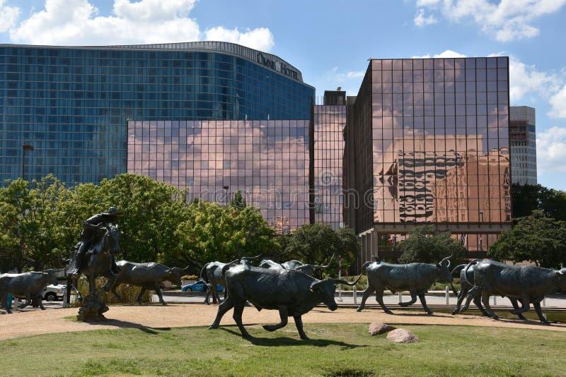 Bydło przejażdżki rzeźba przy Pionierskim placem w Dallas, Teksas zdjęcia stock