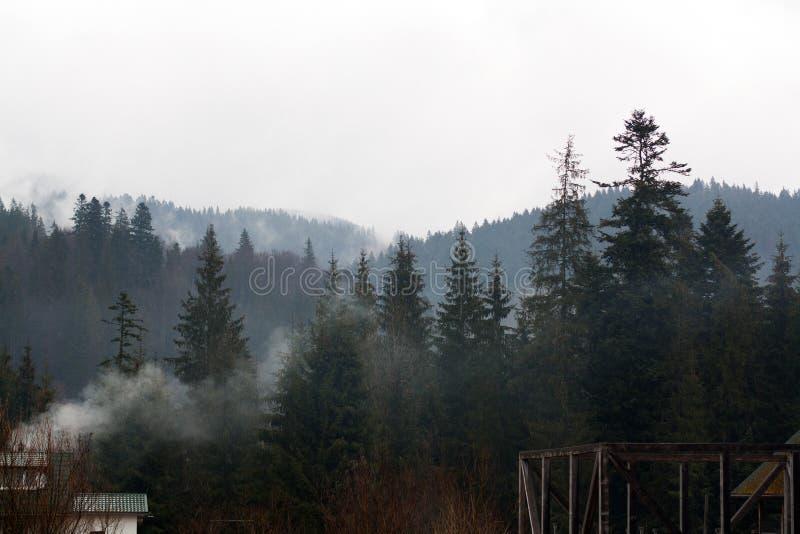 Bygårdbyggnader framme av den dimmiga skogen royaltyfri fotografi