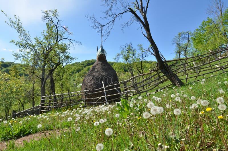 Bygdlandskap i vår, höstack, maskrosor royaltyfri fotografi
