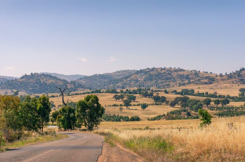 Bygdlandskap med tomma väg- och vildmarkfält royaltyfria bilder