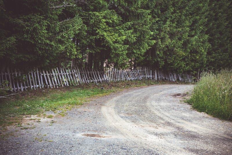 Bygdväg och lantligt trästaket Tara National Park royaltyfri fotografi