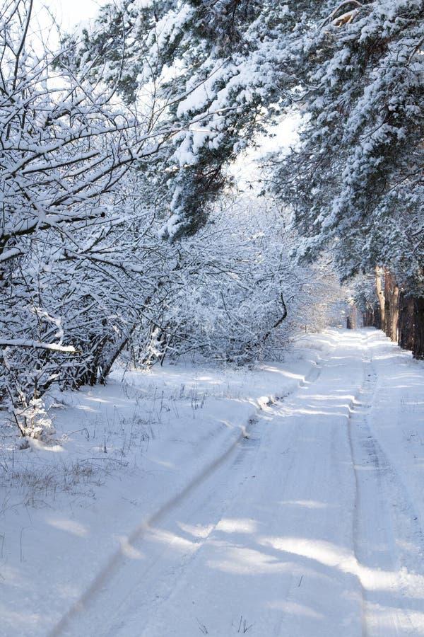 Bygdväg på vinterbilspåret på vägen arkivbilder