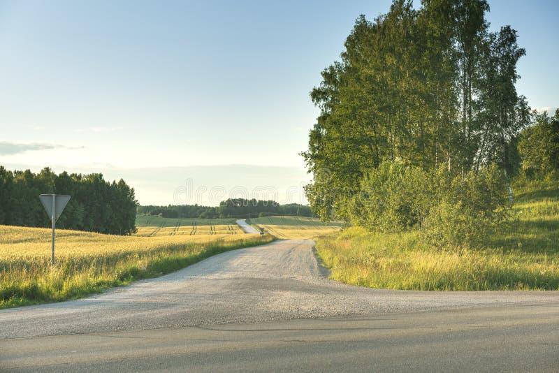 Bygdväg till och med grön äng arkivbild