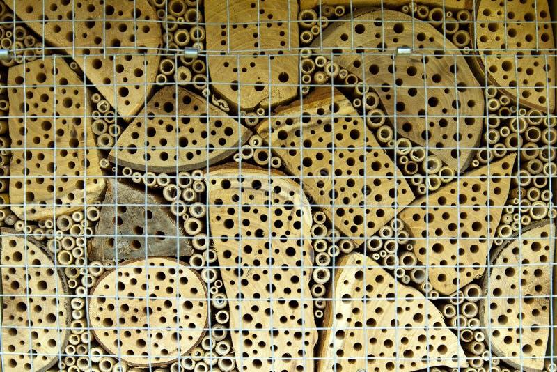 Bygga bo stället för hålabin som konstgjort lite göras för extra hjälp i natur arkivbilder