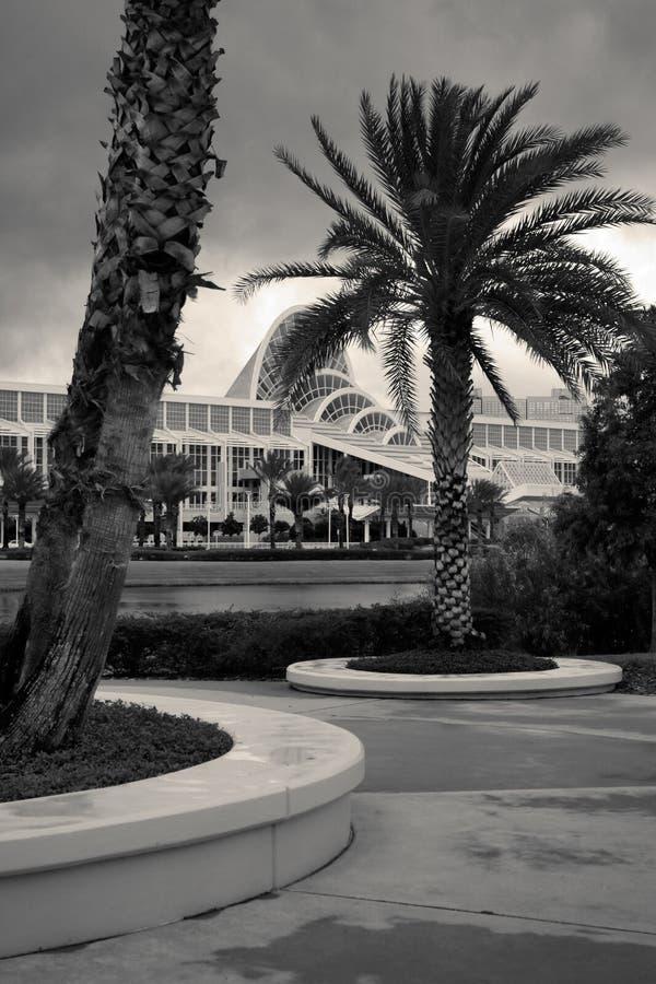 byggande moderna palmträd fotografering för bildbyråer