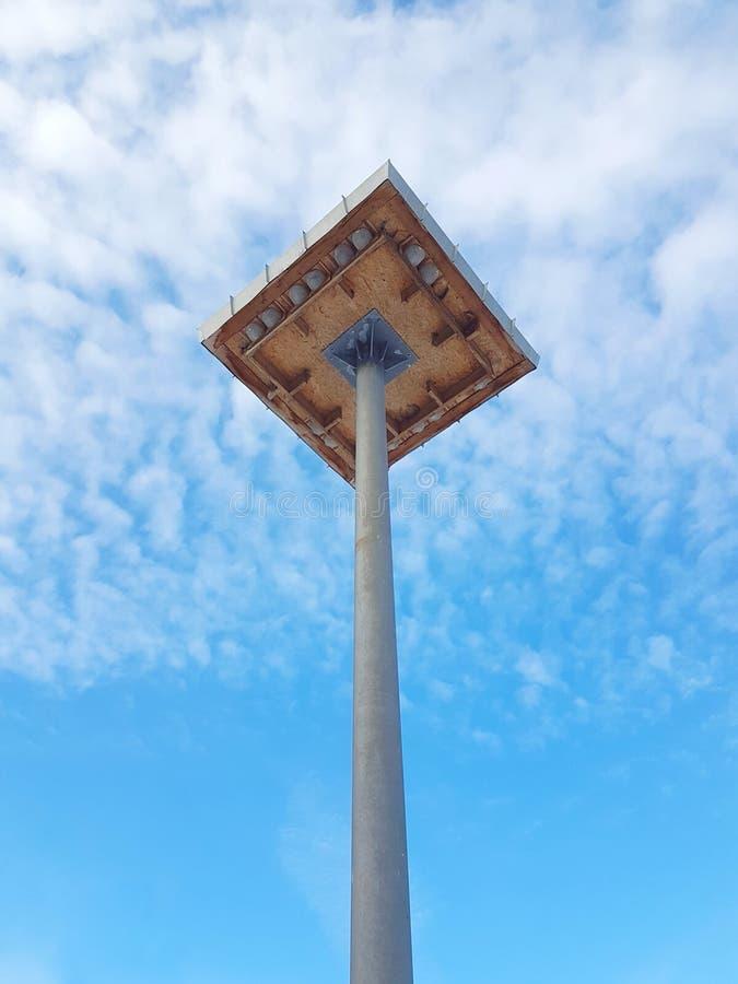 Byggda svalafåglar bygga bo på den höga stolpen arkivfoto