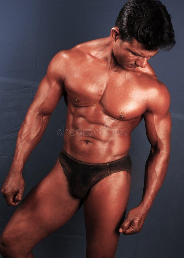 Byggmästare för manlig kropp royaltyfria foton