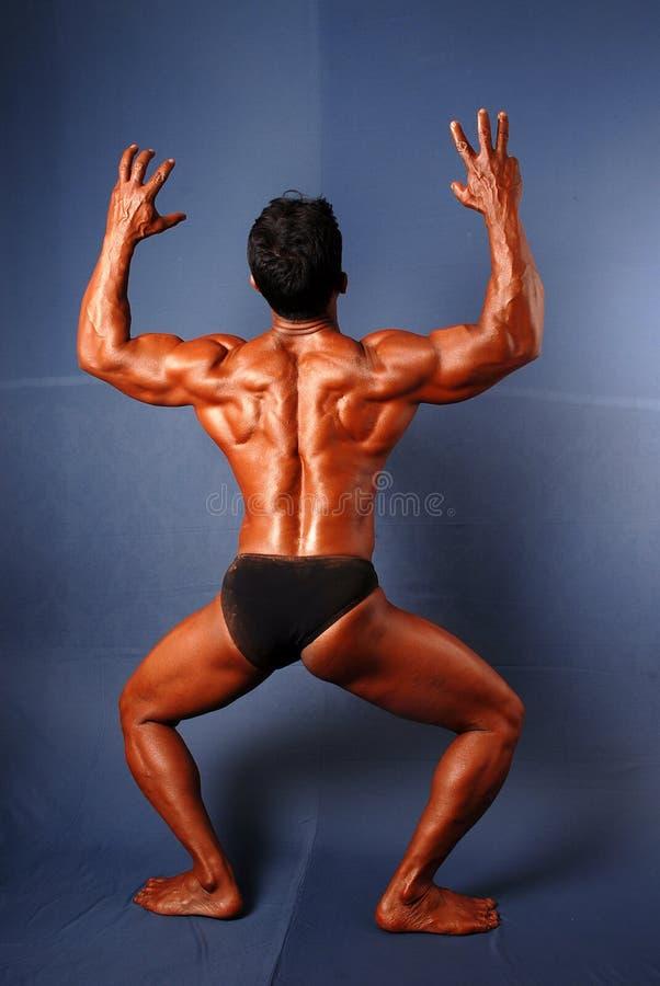 Byggmästare för manlig kropp royaltyfri foto