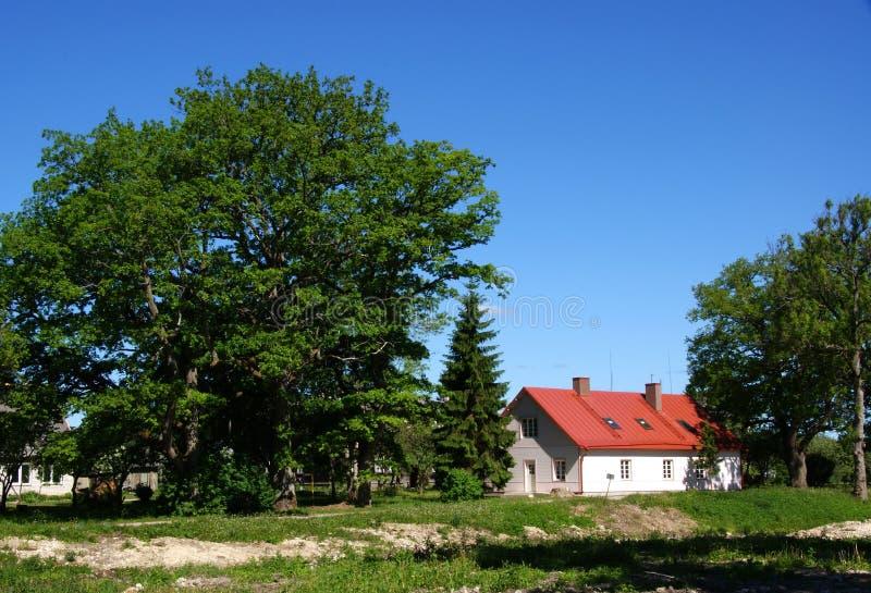 Download Byggnad fotografering för bildbyråer. Bild av tree, bygger - 19798095