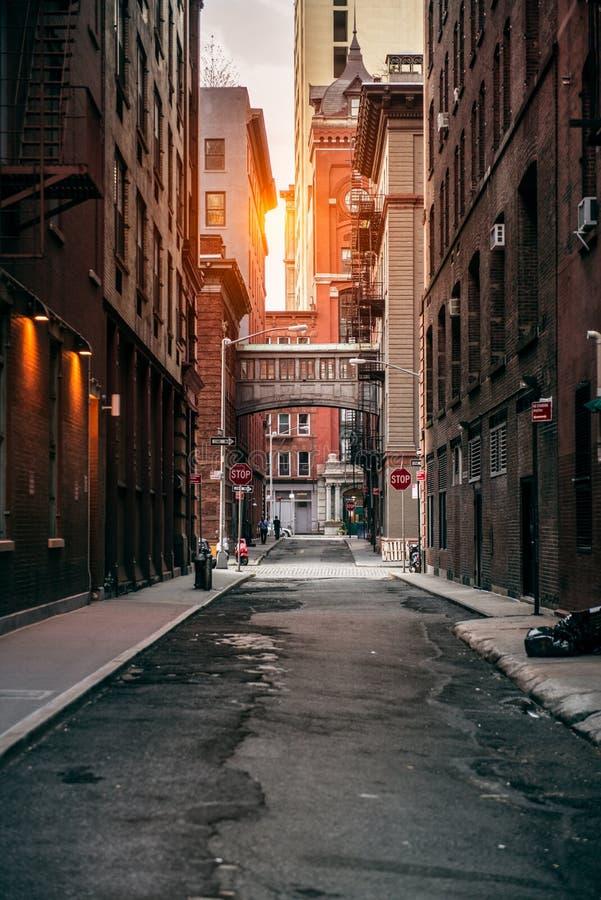 Byggnad för röda tegelstenar på den New York City gatan på solnedgångtid royaltyfria bilder