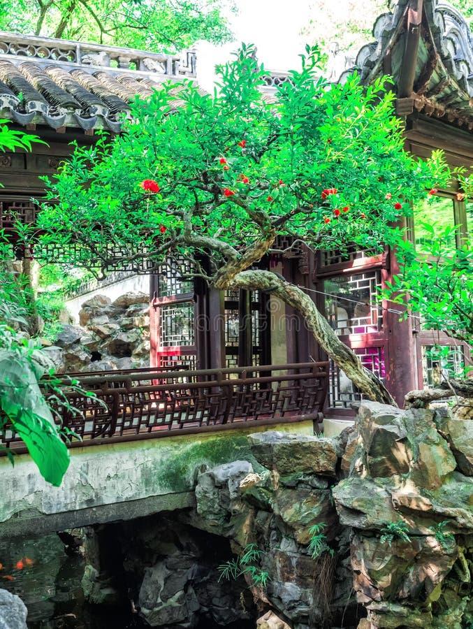 Byggnad för traditionell kines med det utsmyckade taket och röda fönster på Yu trädgårdar, Shanghai, Kina fotografering för bildbyråer