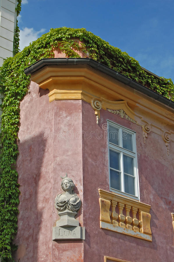 Byggnad i murgröna Uvoz gata i Prague royaltyfri bild