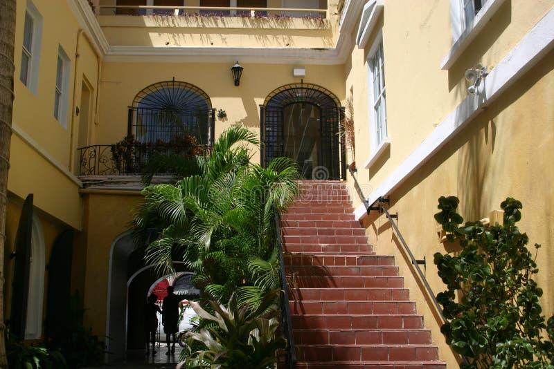 byggnad planterar tropiskt royaltyfria bilder