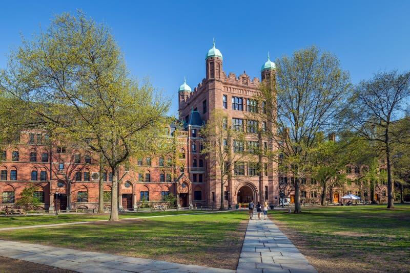 Byggnader för Yale universitet royaltyfria bilder