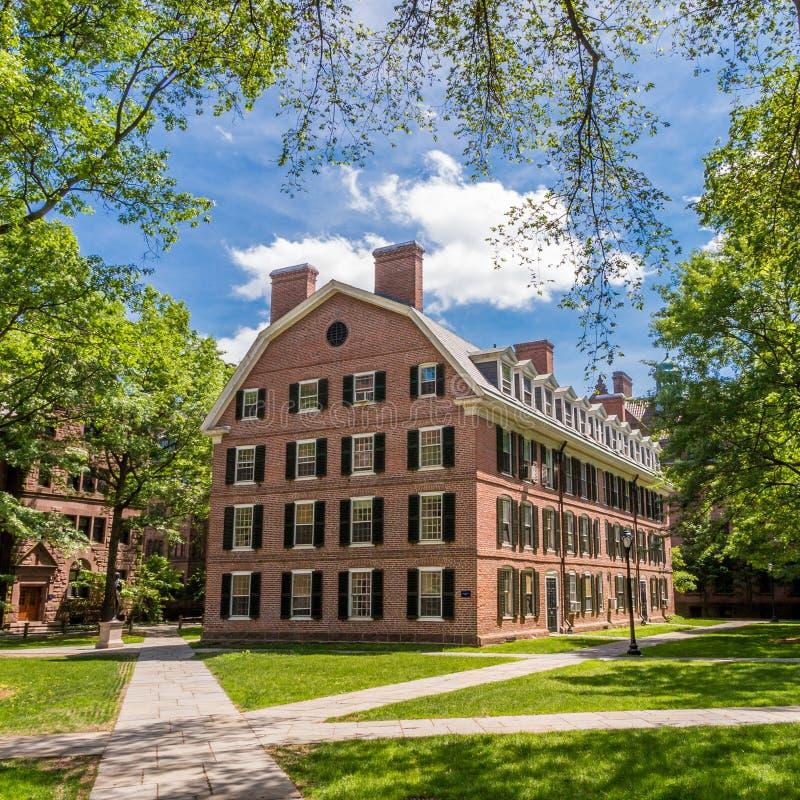 Byggnader för Yale universitet i blå himmel för sommar i New Haven, CT USA royaltyfri fotografi