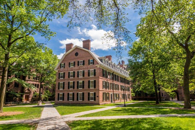 Byggnader för Yale universitet i blå himmel för sommar i New Haven, CT USA royaltyfria bilder