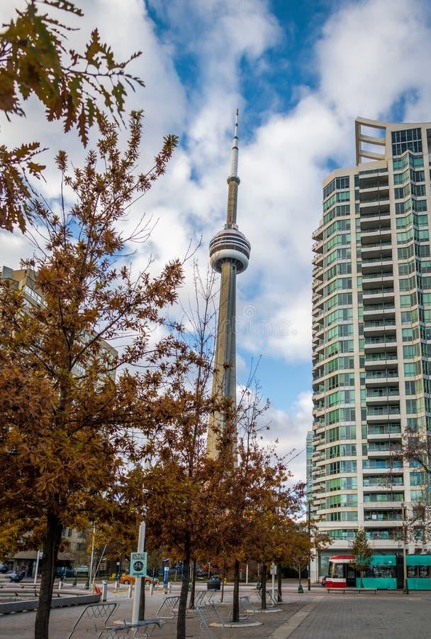 Byggnader i i stadens centrum Toronto med CN-torn- och höstvegetation - Toronto, Ontario, Kanada arkivbilder