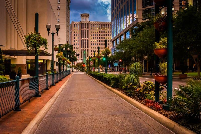 Byggnader och landskap längs en gata i Orlando, Florida royaltyfria bilder
