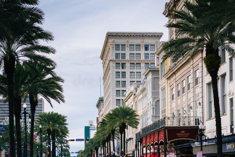 Byggnader och palmtr?d l?ngs Canal Street, i New Orleans, Louisiana arkivbild