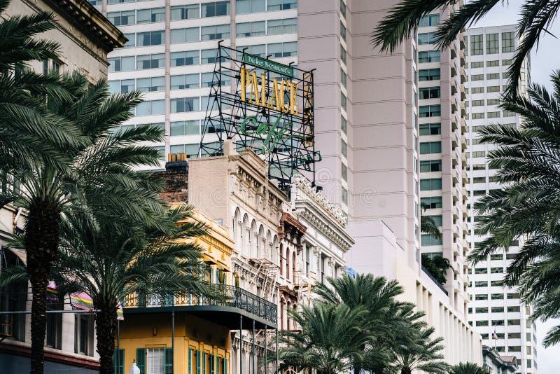 Byggnader och palmtr?d l?ngs Canal Street, i New Orleans, Louisiana arkivfoton