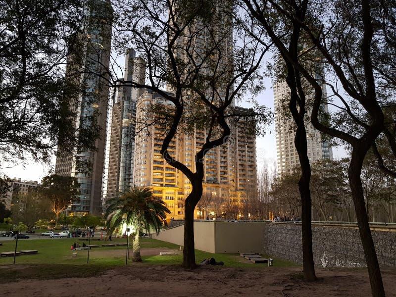Byggnader och trees royaltyfria bilder