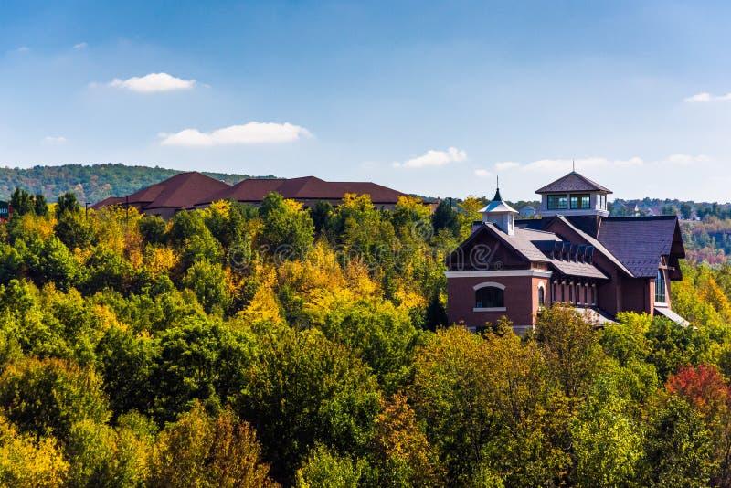 Byggnader på en kulle nära Scranton, Pennsylvania arkivfoto