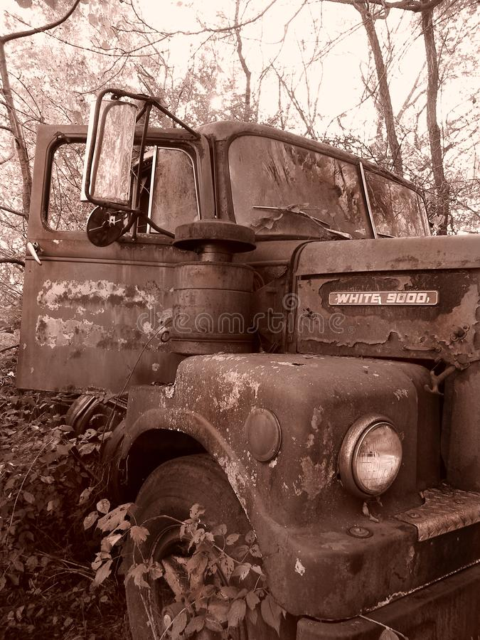 Sepia tone vintage farm truck body overgrown with shrubs stock photography