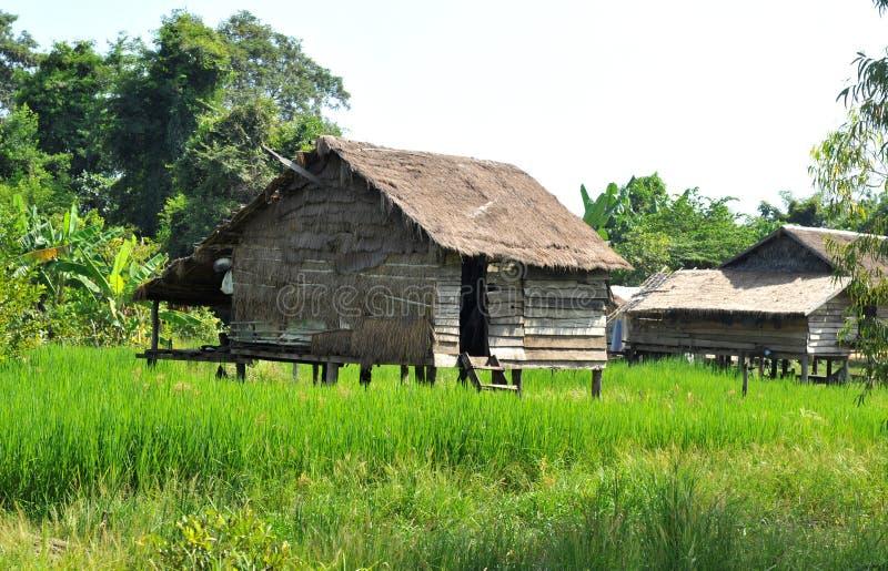 Byhus i cambodia fotografering för bildbyråer