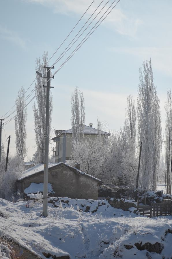 Byhus i vinter nära träd arkivbild
