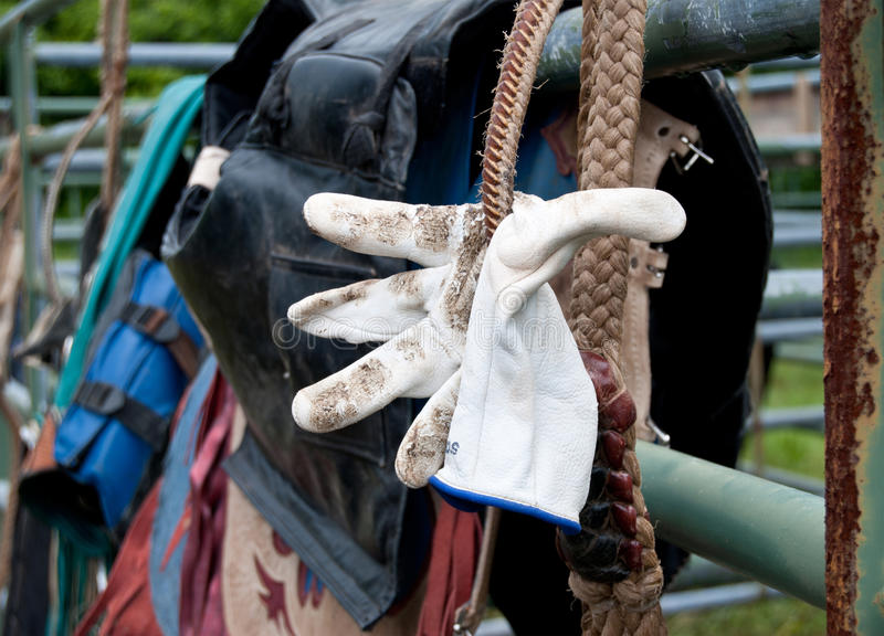 Byka jeźdza rękawiczka wiązał w jego patkę obrazy stock