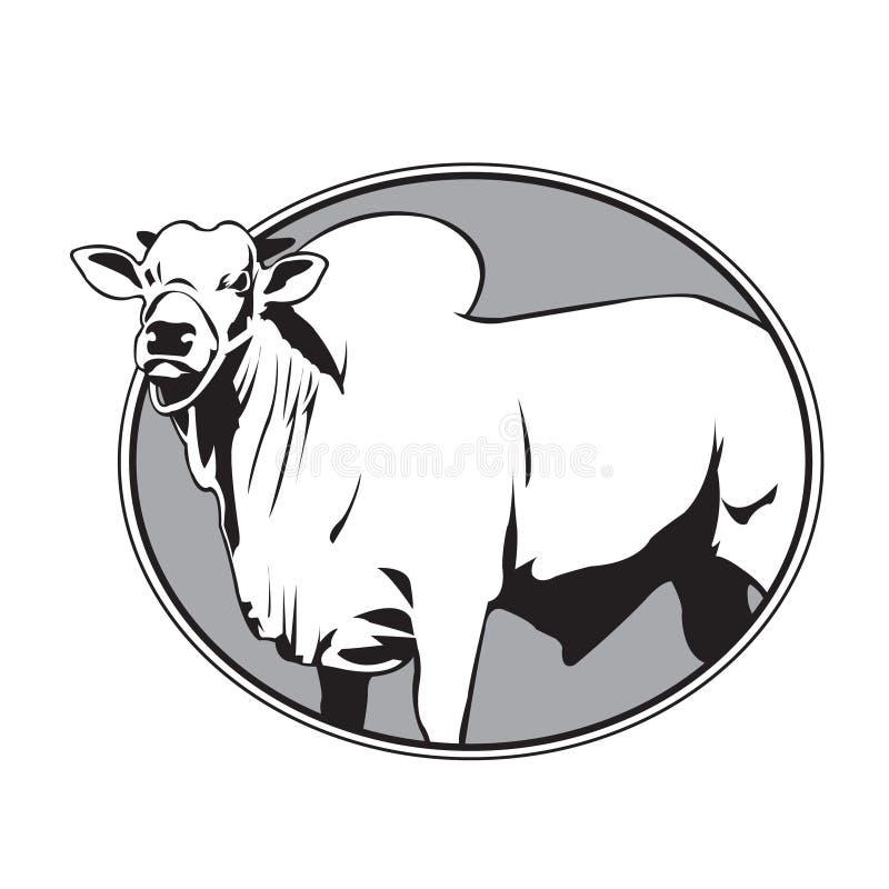 Byka zebu rocznika logo ilustracja wektor
