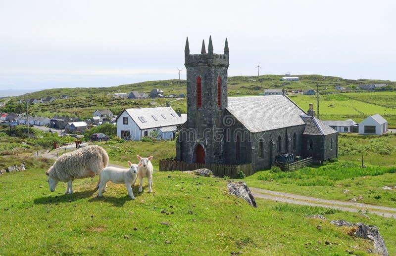 Bykyrka på den skotska ön royaltyfri bild