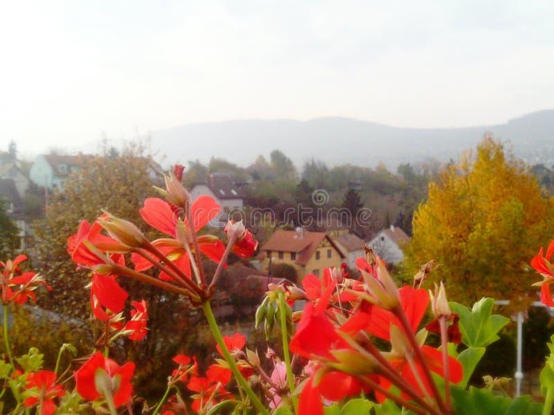 Bylandskap på en ljus höstdag med berg i bakgrunden arkivfoto