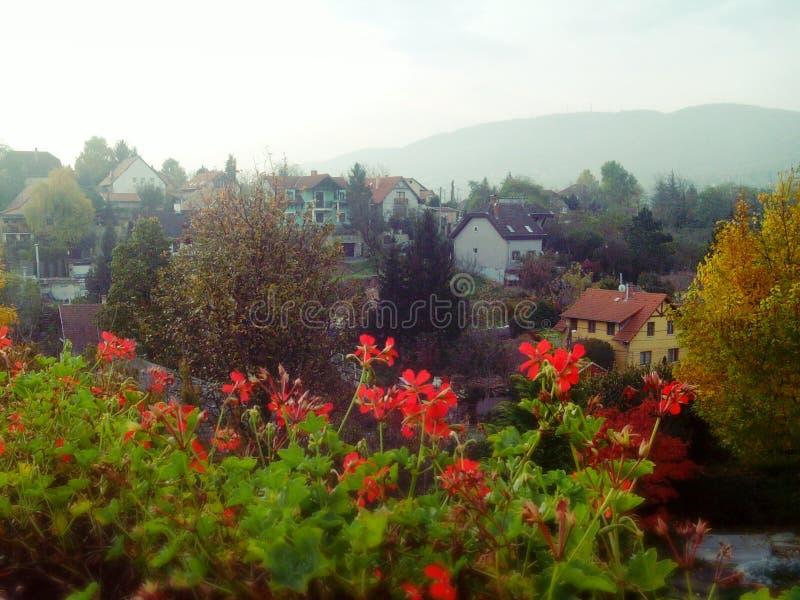 Bylandskap på en ljus höstdag med berg i bakgrunden arkivbild