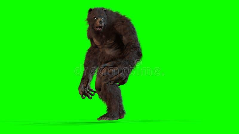Byli niedźwiadkowi 3d odpłacają się wizerunek ilustracja wektor
