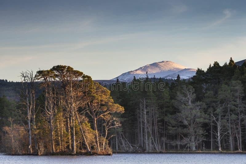 Bynack больше гора и озера Mallachie в национальном парке Cairngorms Шотландии стоковая фотография