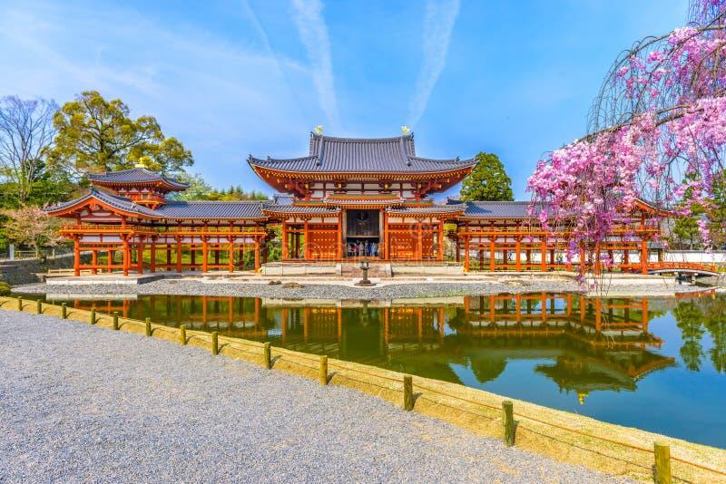 Byodo在寺庙,日本 库存图片