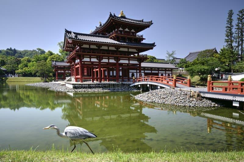 Byodo-i templet och häger i Uji Japan royaltyfri foto